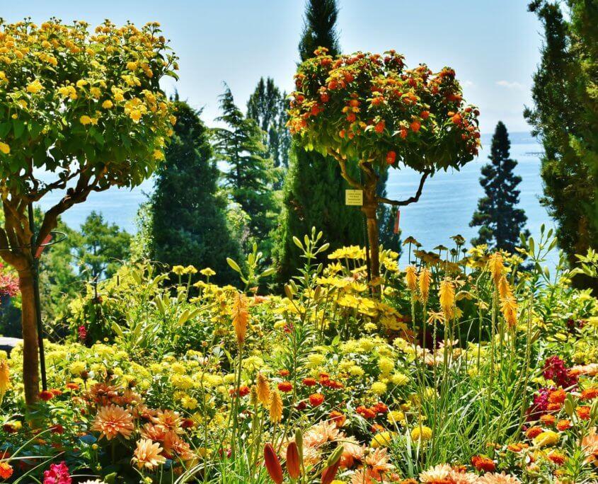 Blumengarten auf der Insel Mainau
