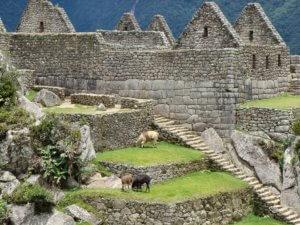 Neue Weltwunder - Machu Picchu
