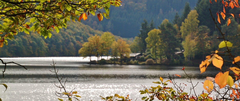 Aussicht auf den Rursee im Herbst