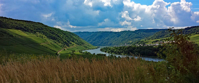Fluss Mosel durch die Weinberge