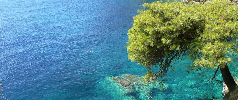türkises Meer an der Adriaküste