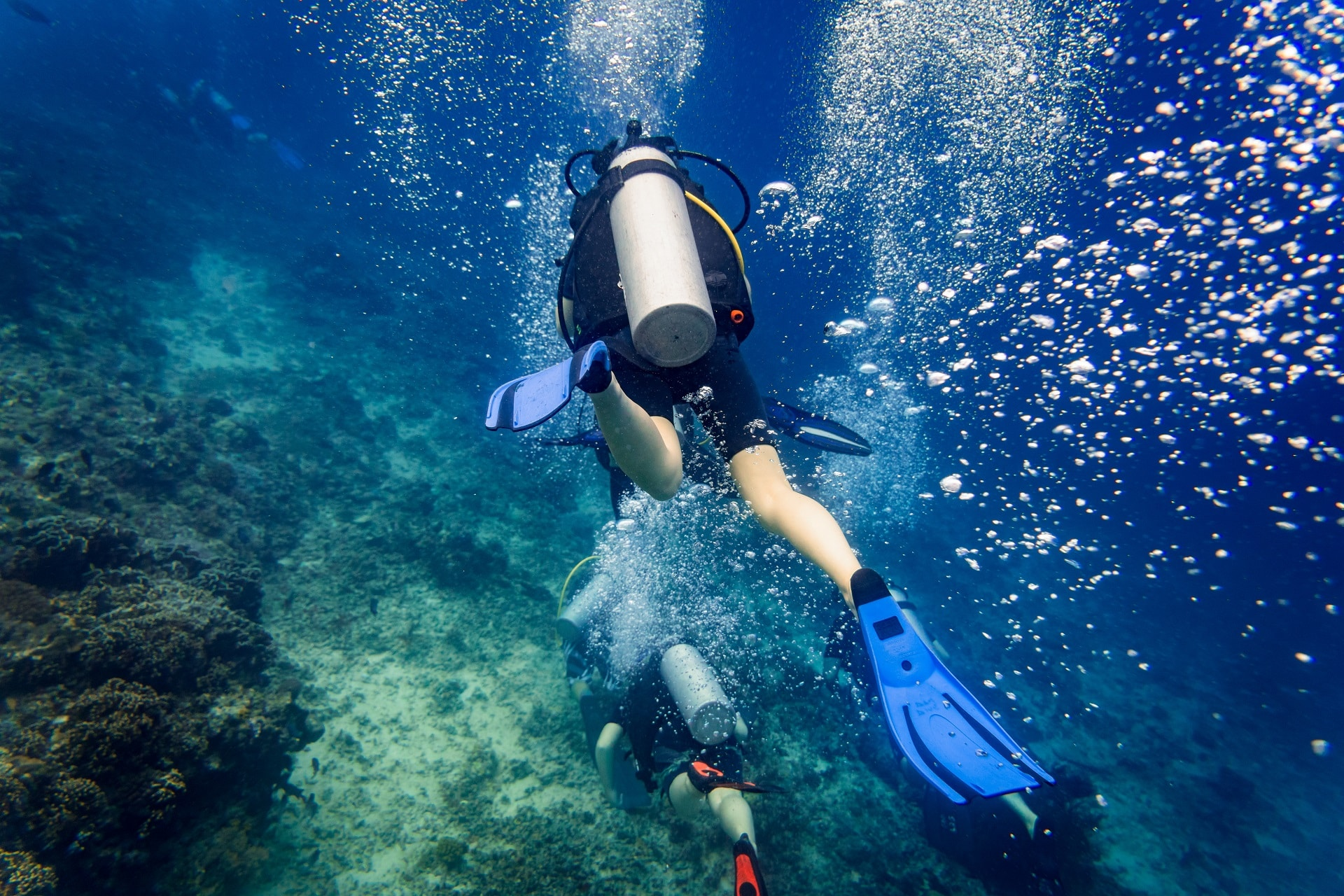 Tauchurlaub: Air bubbles emerging from diver at coral reef under water
