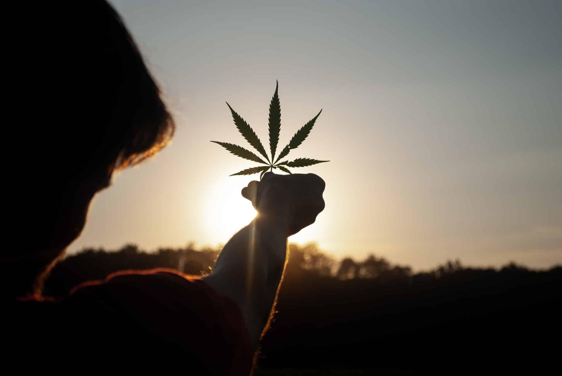Die besten Cannabis-Reiseziele mit berauschendem Charme.